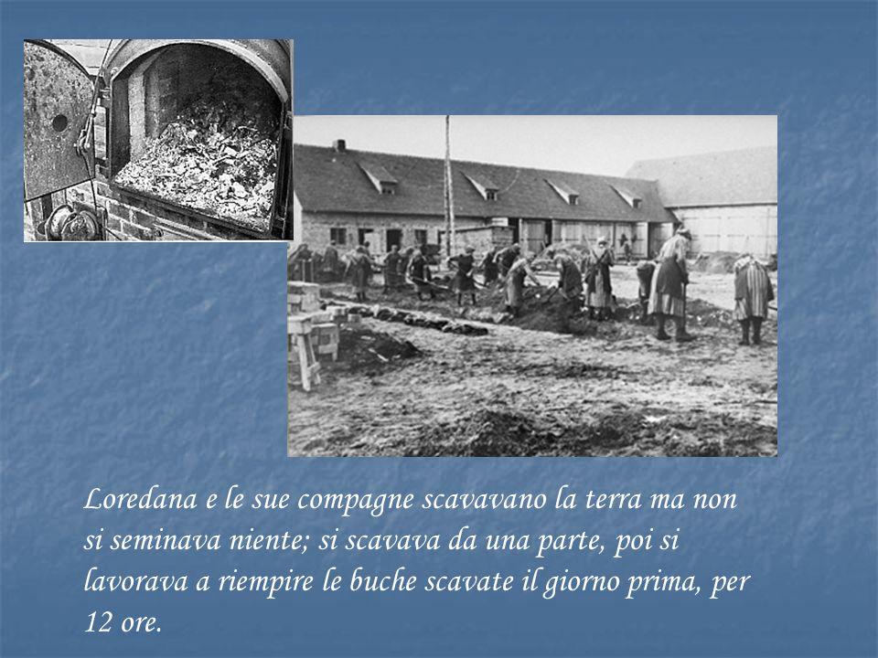 Loredana e le sue compagne scavavano la terra ma non si seminava niente; si scavava da una parte, poi si lavorava a riempire le buche scavate il giorno prima, per 12 ore.