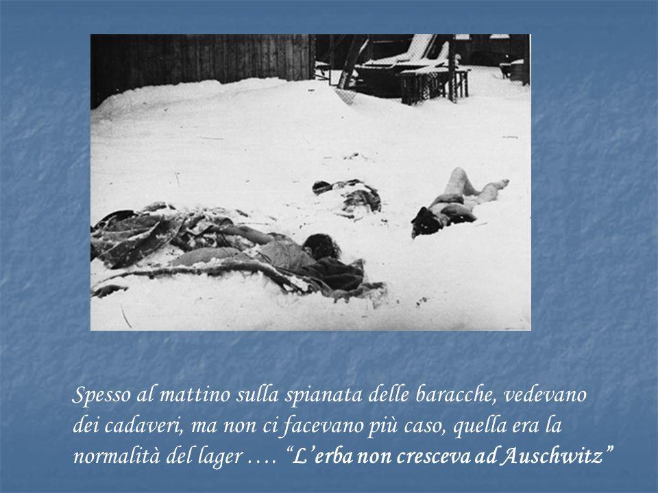 Spesso al mattino sulla spianata delle baracche, vedevano dei cadaveri, ma non ci facevano più caso, quella era la normalità del lager ….