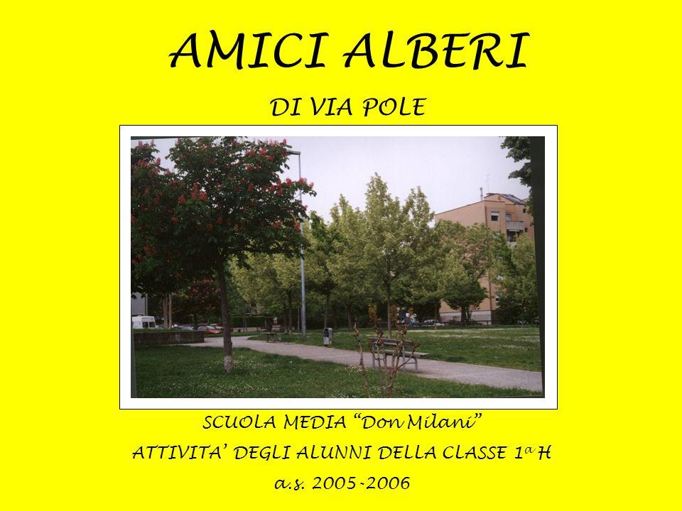AMICI ALBERI DI VIA POLE SCUOLA MEDIA Don Milani
