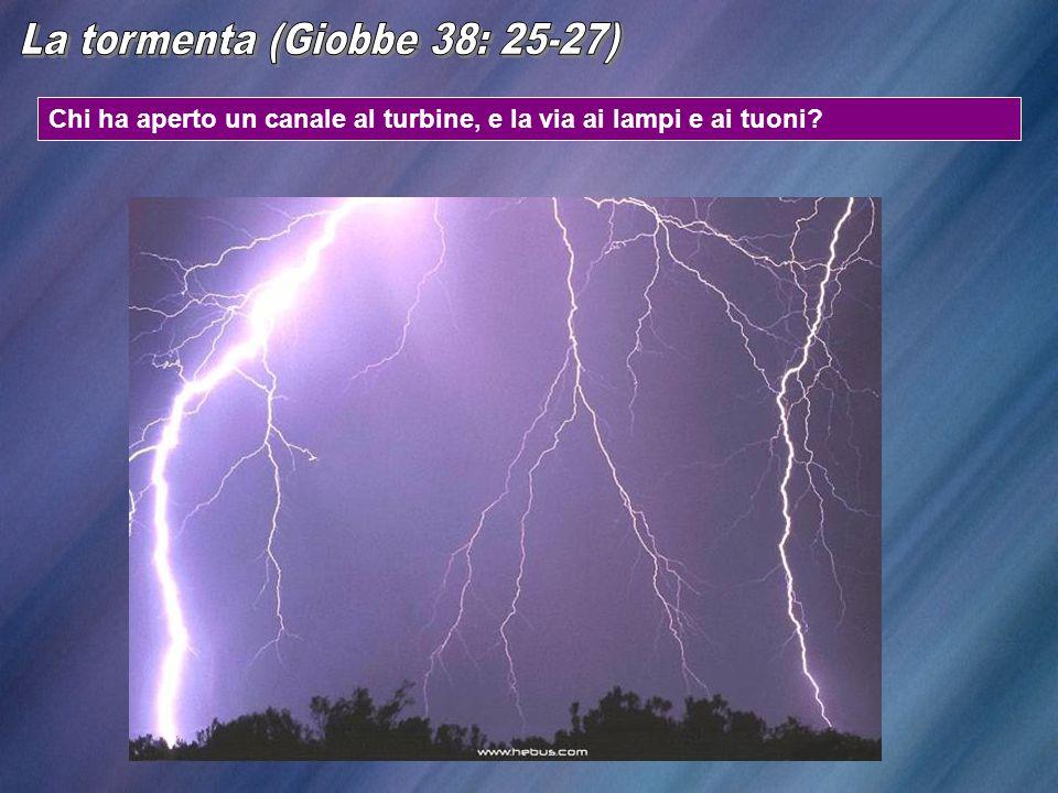 La tormenta (Giobbe 38: 25-27)