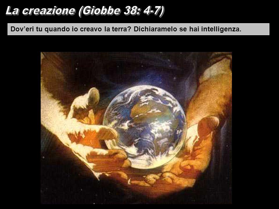 La creazione (Giobbe 38: 4-7)