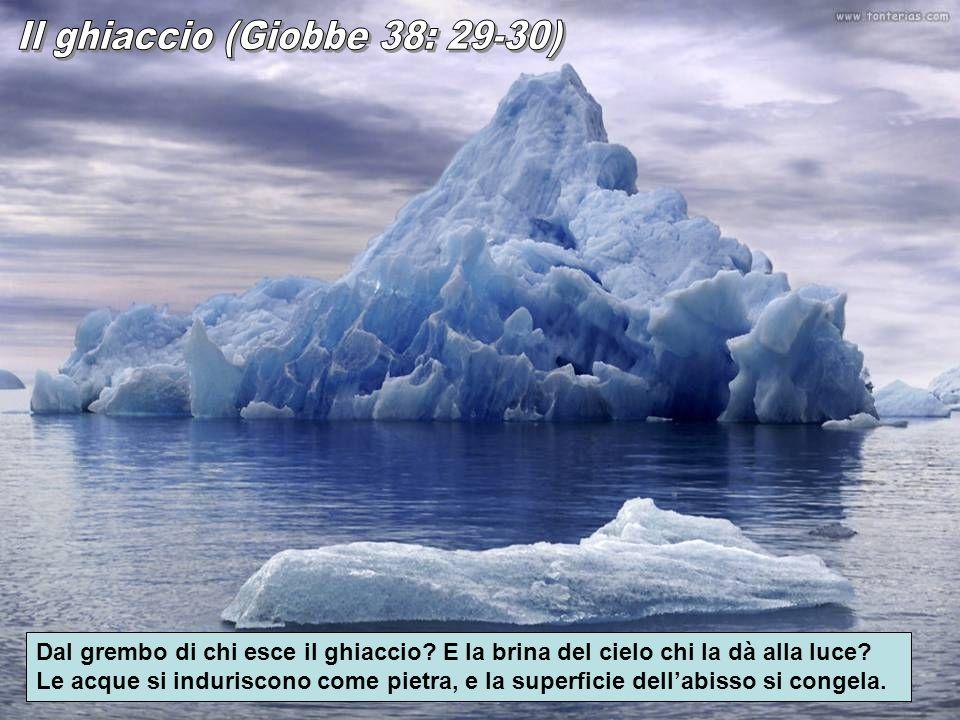 Il ghiaccio (Giobbe 38: 29-30)