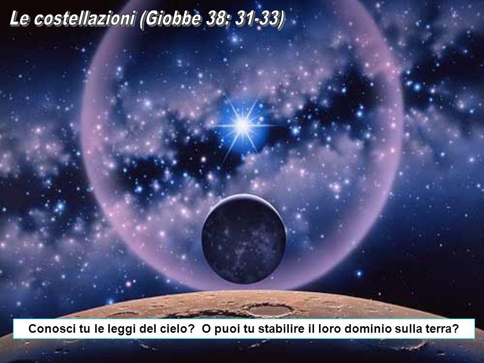 Le costellazioni (Giobbe 38: 31-33)