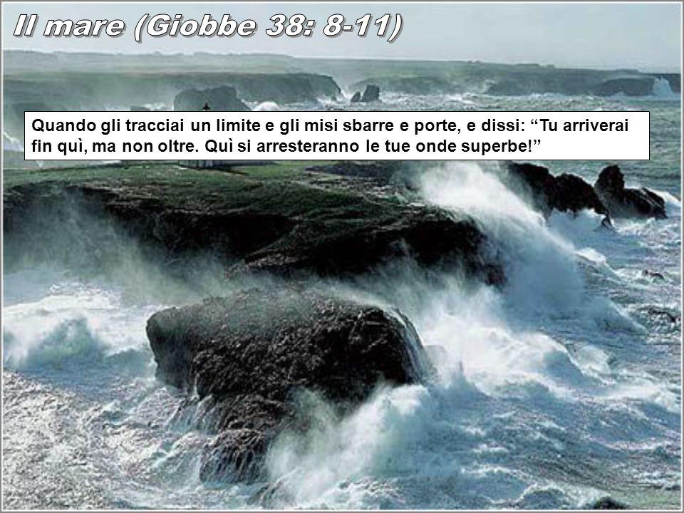 Il mare (Giobbe 38: 8-11)