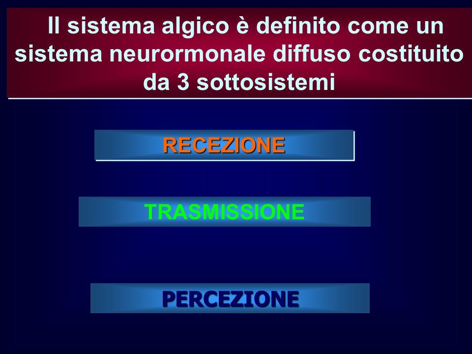Il sistema algico è definito come un sistema neurormonale diffuso costituito da 3 sottosistemi
