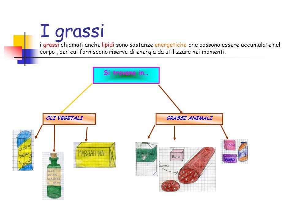 I grassi i grassi chiamati anche lipidi sono sostanze energetiche che possono essere accumulate nel corpo , per cui forniscono riserve di energia da utilizzare nei momenti.