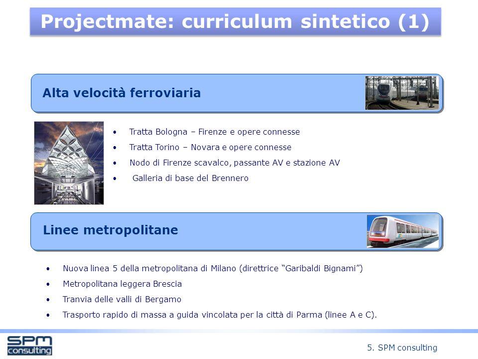 Projectmate: curriculum sintetico (1)