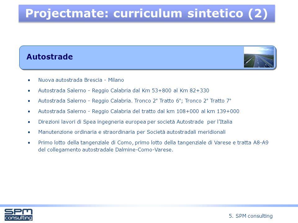 Projectmate: curriculum sintetico (2)