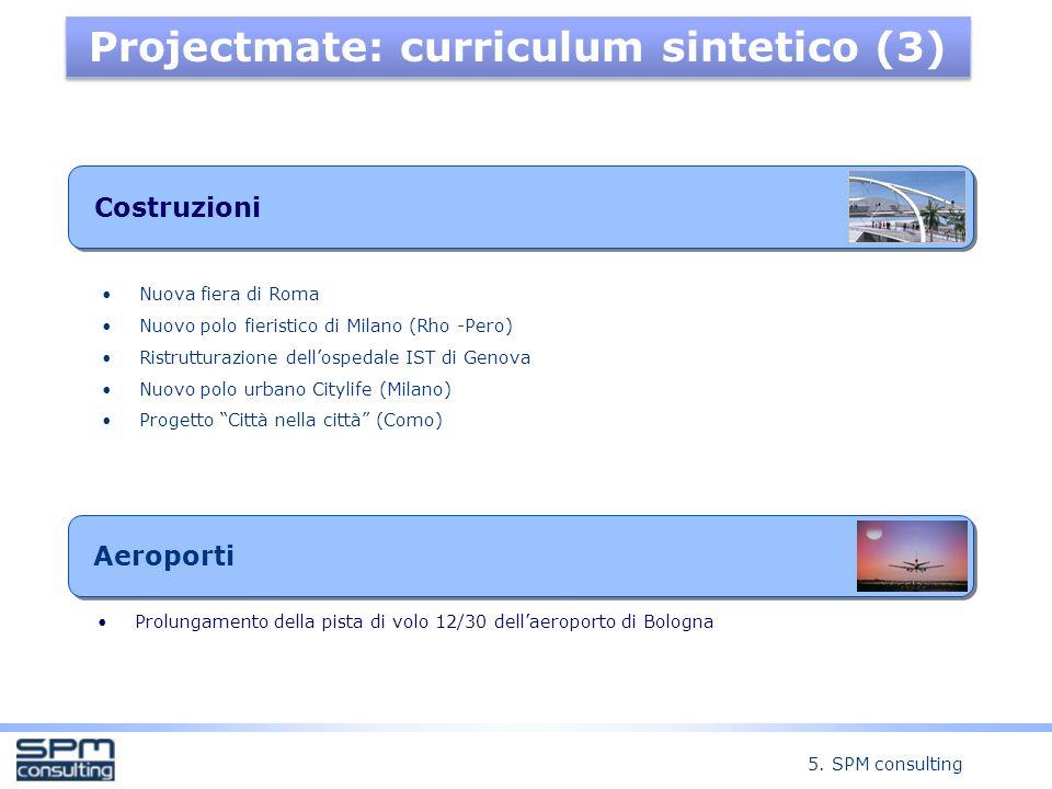 Projectmate: curriculum sintetico (3)