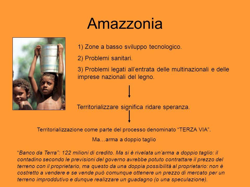 Amazzonia 1) Zone a basso sviluppo tecnologico. 2) Problemi sanitari.