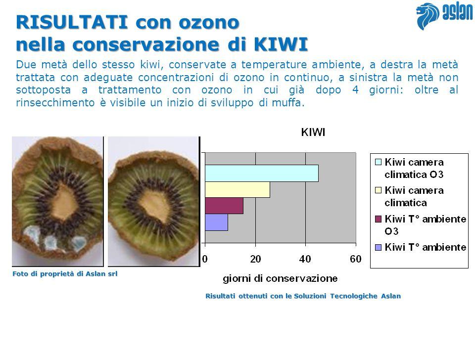 RISULTATI con ozono nella conservazione di KIWI