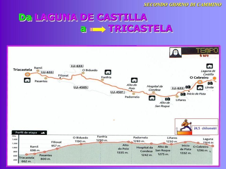 Da LAGUNA DE CASTILLA a TRICASTELA