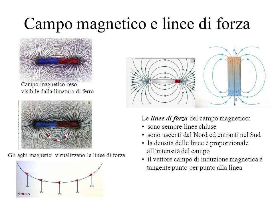 Campo magnetico e linee di forza