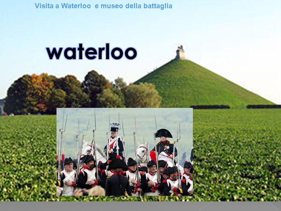 Visita a Waterloo e museo della battaglia
