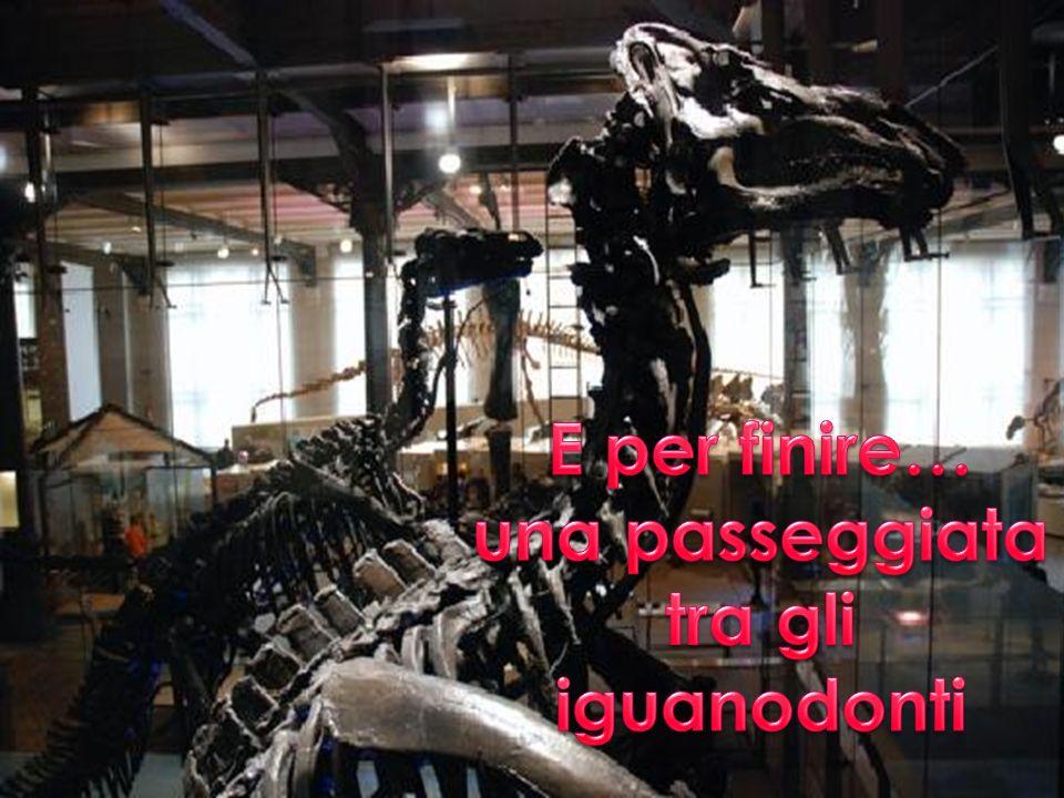una passeggiata tra gli iguanodonti