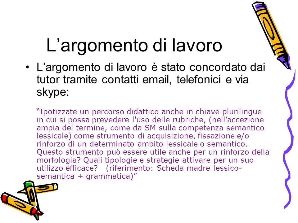 L'argomento di lavoro L'argomento di lavoro è stato concordato dai tutor tramite contatti email, telefonici e via skype: