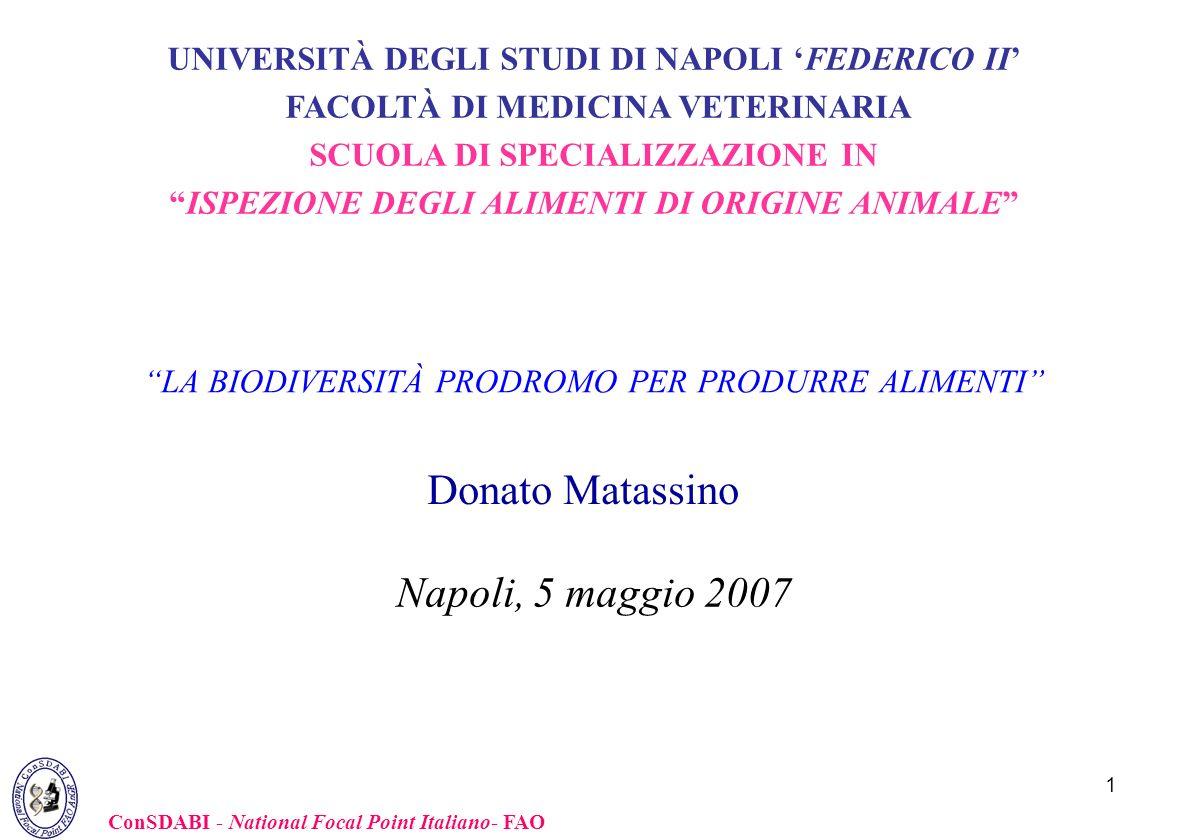 Donato Matassino Napoli, 5 maggio 2007