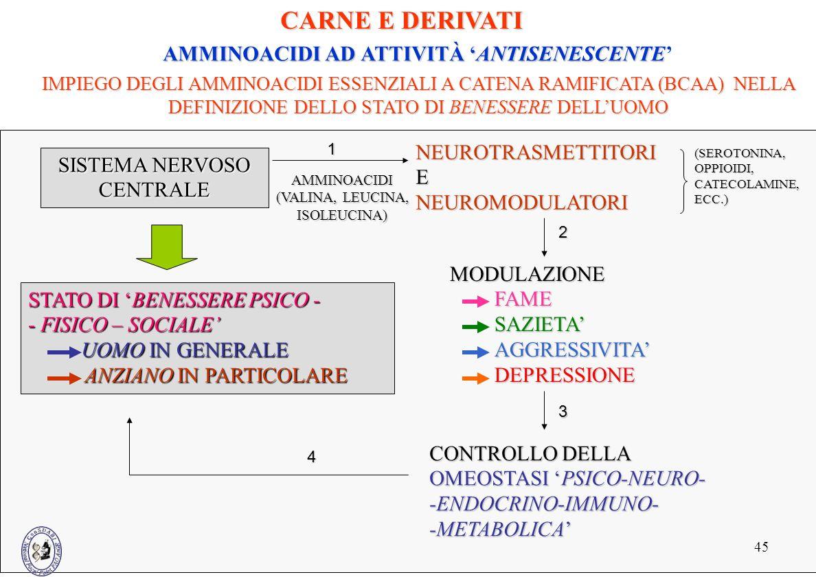 AMMINOACIDI AD ATTIVITÀ 'ANTISENESCENTE'