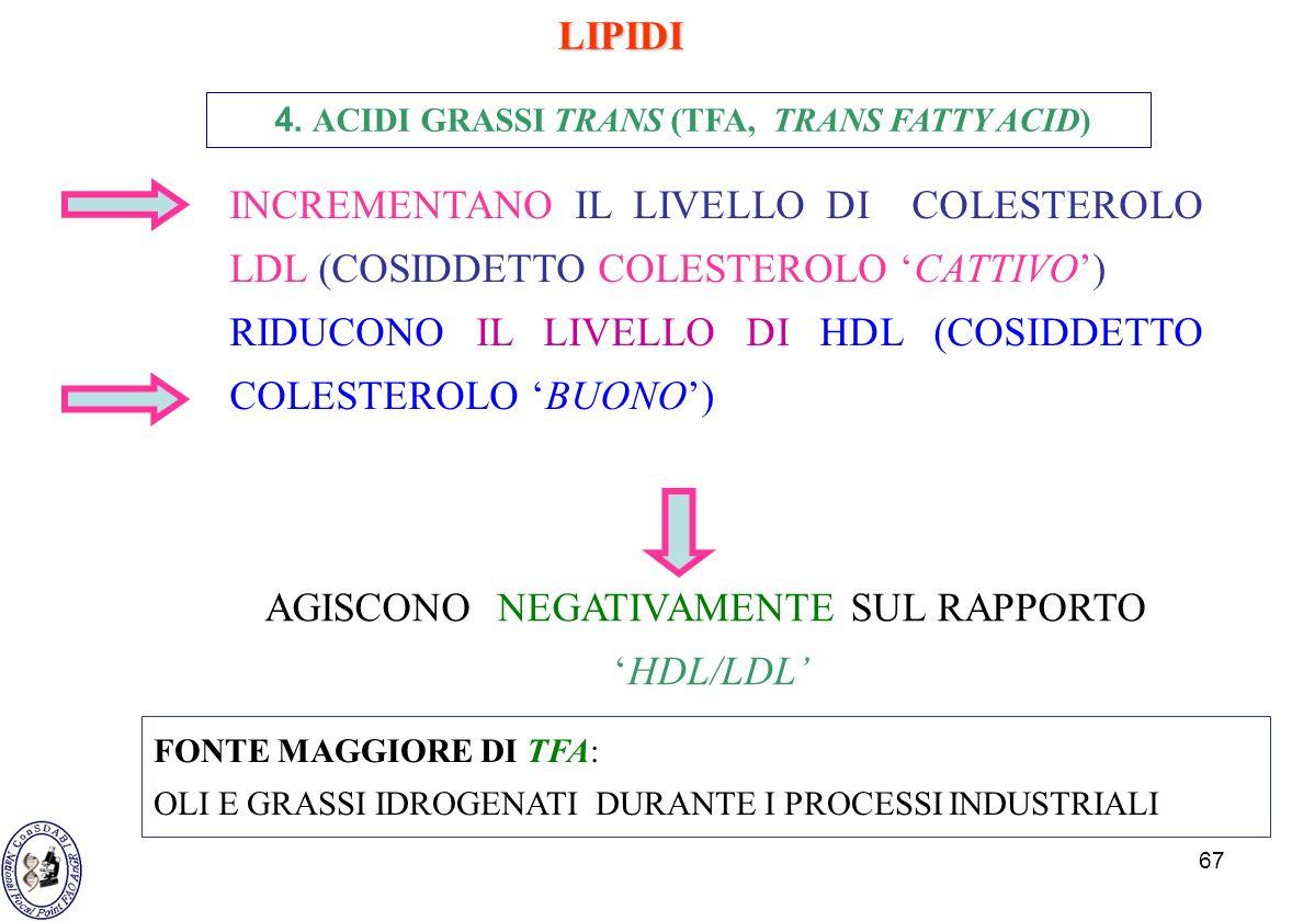 4. ACIDI GRASSI TRANS (TFA, TRANS FATTY ACID)