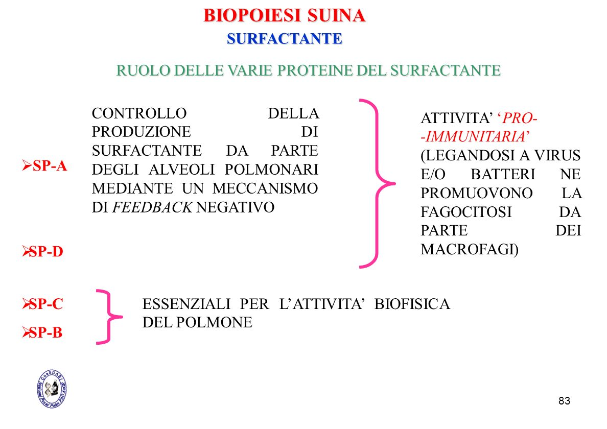 RUOLO DELLE VARIE PROTEINE DEL SURFACTANTE
