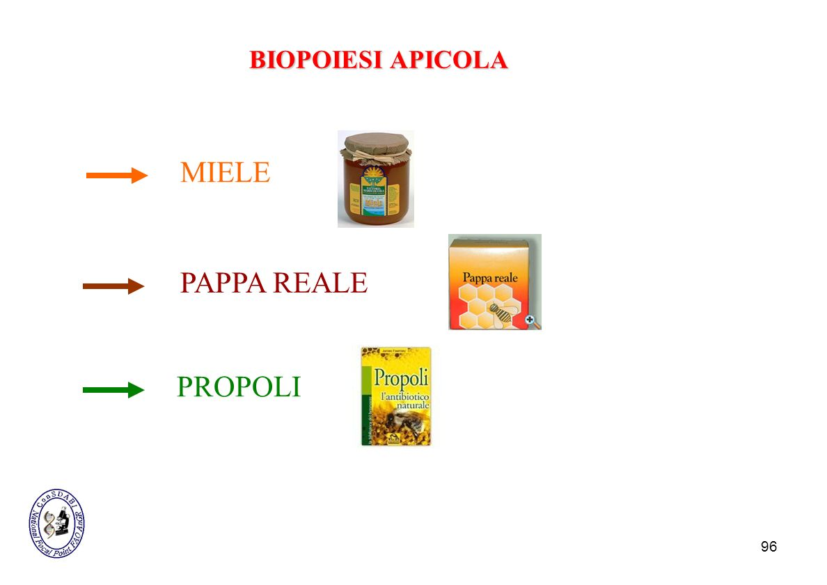 BIOPOIESI APICOLA MIELE PAPPA REALE PROPOLI