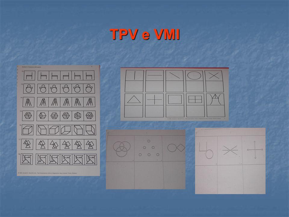 TPV e VMI