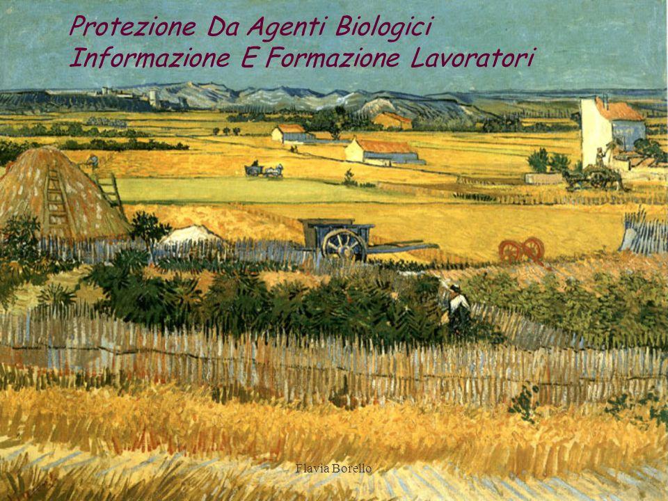 Protezione Da Agenti Biologici Informazione E Formazione Lavoratori