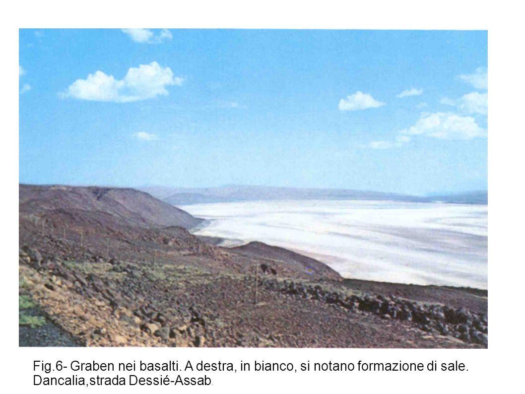 Fig. 6- Graben nei basalti