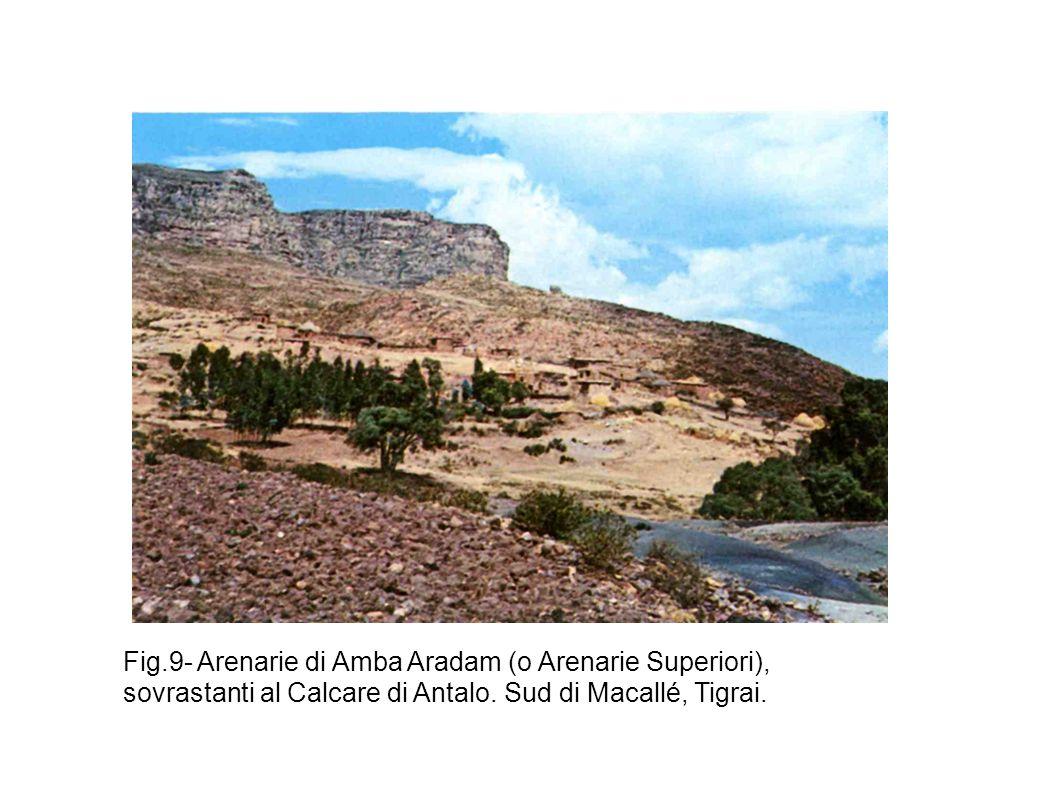 Fig.9- Arenarie di Amba Aradam (o Arenarie Superiori), sovrastanti al Calcare di Antalo.