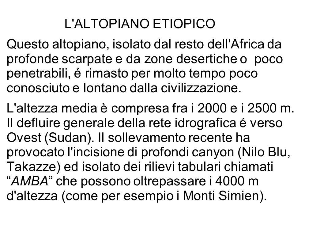 L ALTOPIANO ETIOPICO