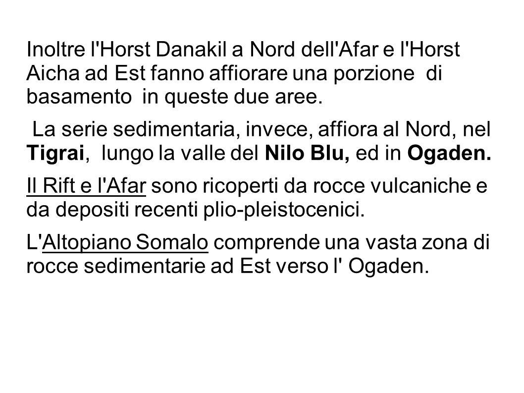 Inoltre l Horst Danakil a Nord dell Afar e l Horst Aicha ad Est fanno affiorare una porzione di basamento in queste due aree.