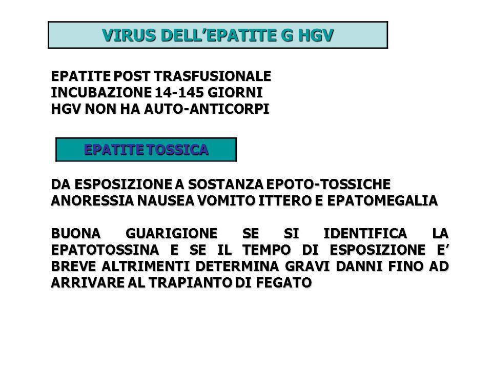 VIRUS DELL'EPATITE G HGV