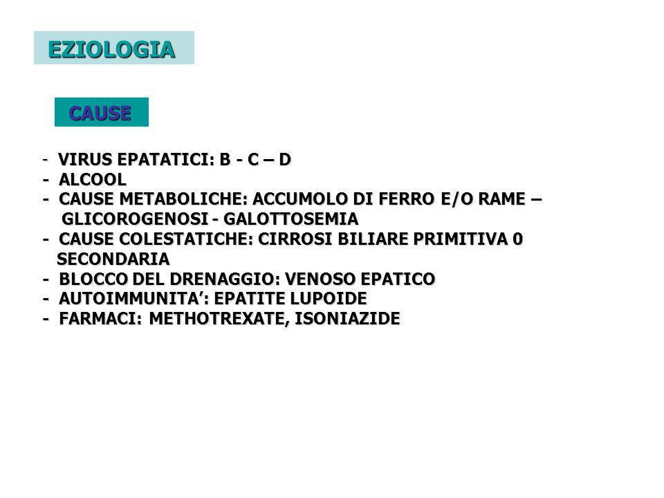 EZIOLOGIA CAUSE VIRUS EPATATICI: B - C – D
