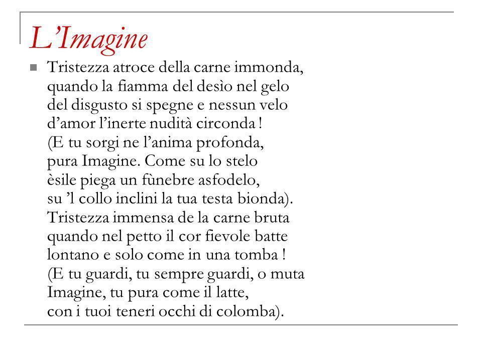 L'Imagine