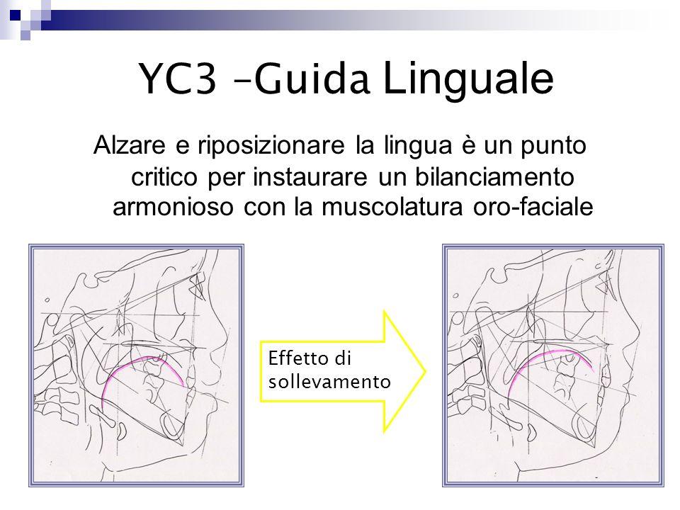 YC3 –Guida Linguale