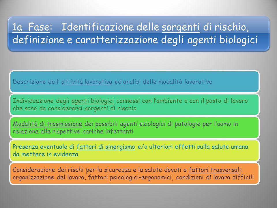 1a Fase: Identificazione delle sorgenti di rischio, definizione e caratterizzazione degli agenti biologici