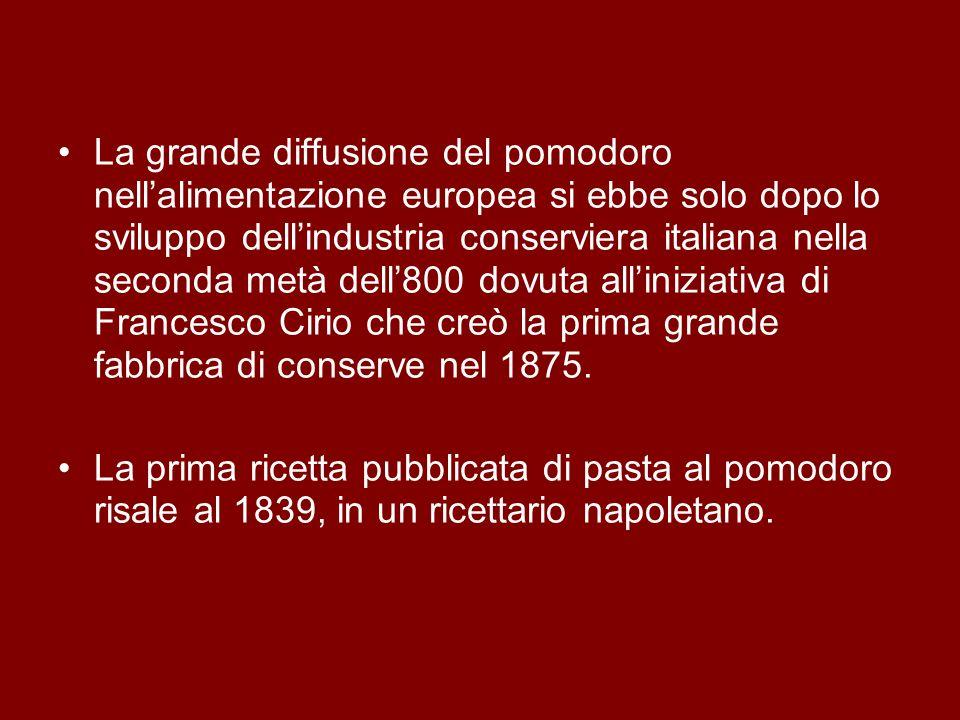 La grande diffusione del pomodoro nell'alimentazione europea si ebbe solo dopo lo sviluppo dell'industria conserviera italiana nella seconda metà dell'800 dovuta all'iniziativa di Francesco Cirio che creò la prima grande fabbrica di conserve nel 1875.