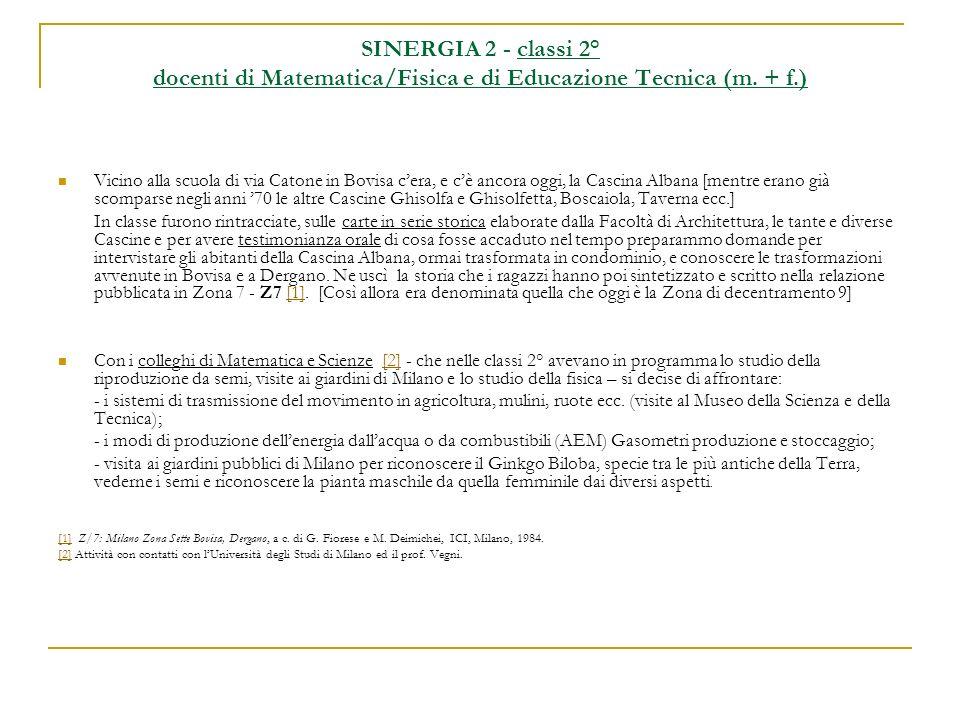 SINERGIA 2 - classi 2° docenti di Matematica/Fisica e di Educazione Tecnica (m. + f.)