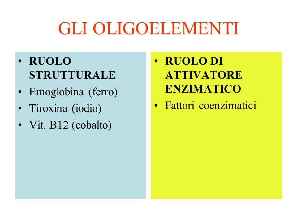 GLI OLIGOELEMENTI RUOLO STRUTTURALE Emoglobina (ferro)