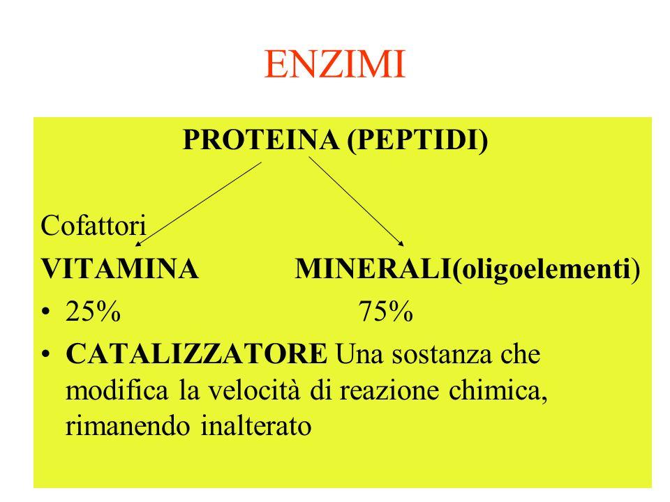 ENZIMI PROTEINA (PEPTIDI) Cofattori VITAMINA MINERALI(oligoelementi)