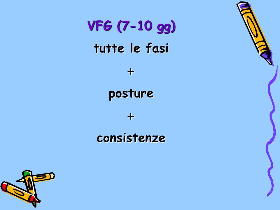 VFG (7-10 gg) tutte le fasi  posture consistenze