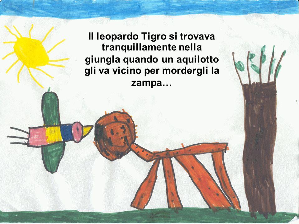 Il leopardo Tigro si trovava tranquillamente nella giungla quando un aquilotto gli va vicino per mordergli la zampa…