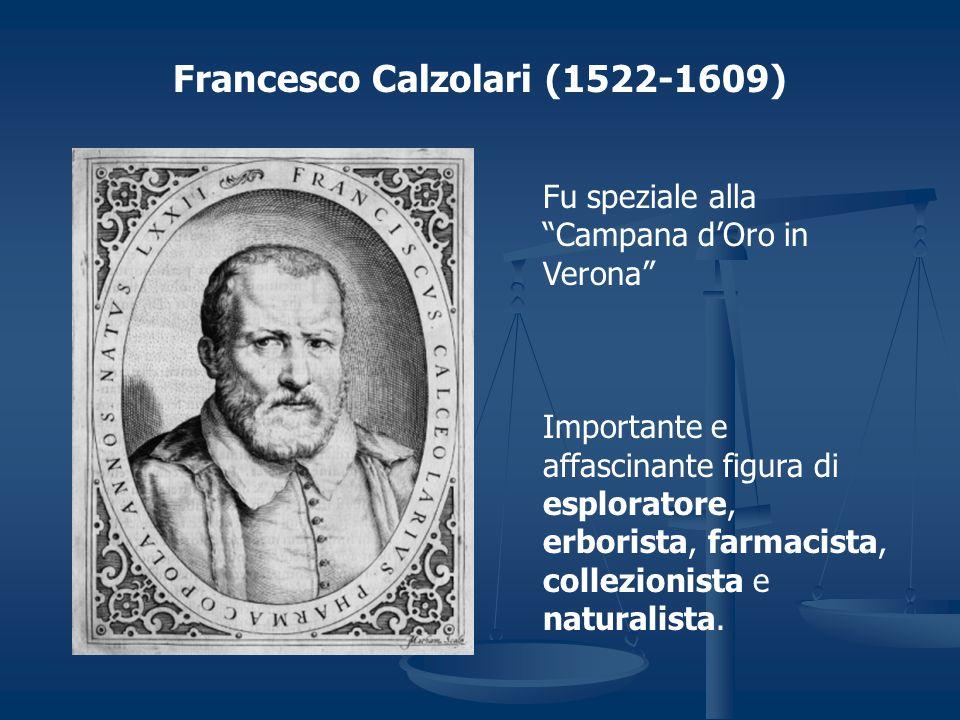 Francesco Calzolari (1522-1609)