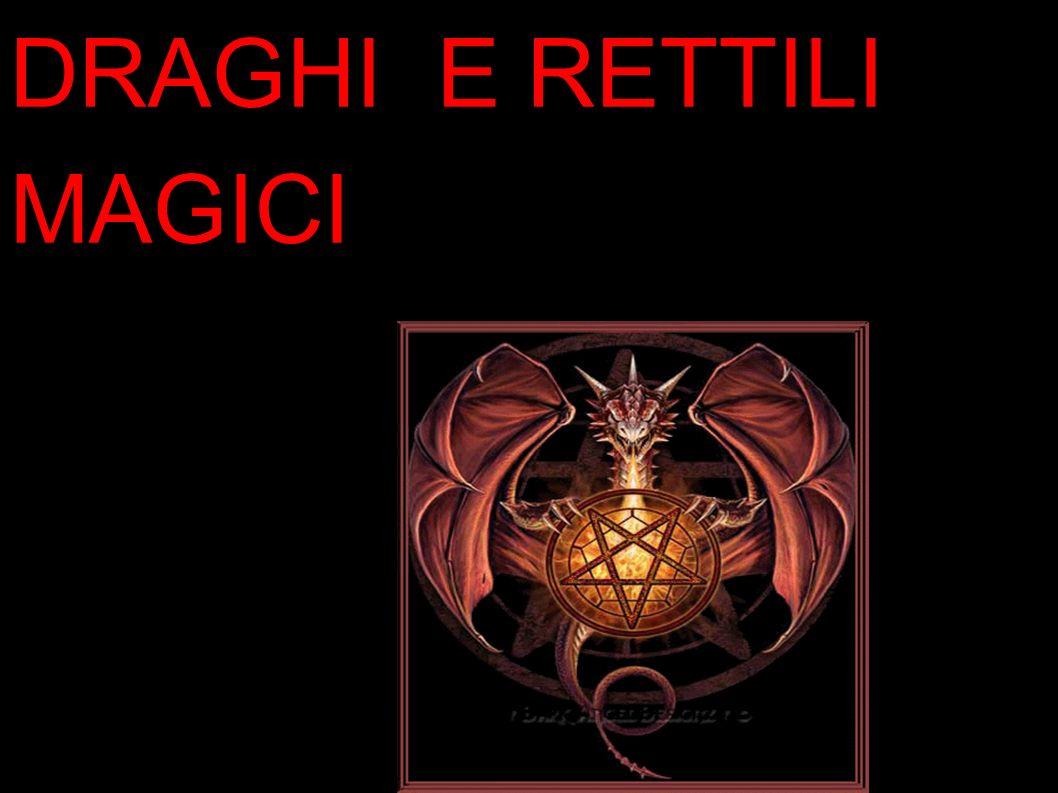 DRAGHI E RETTILI MAGICI