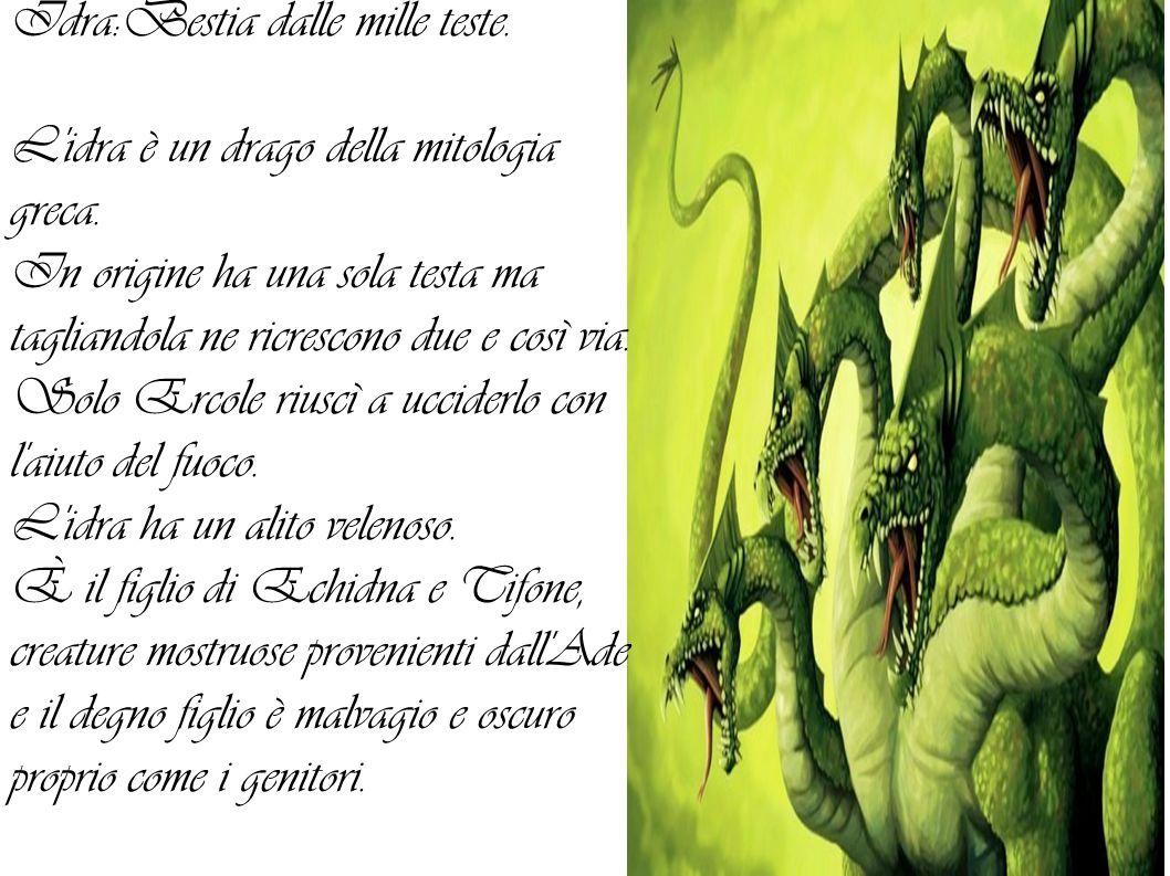 Idra:Bestia dalle mille teste.