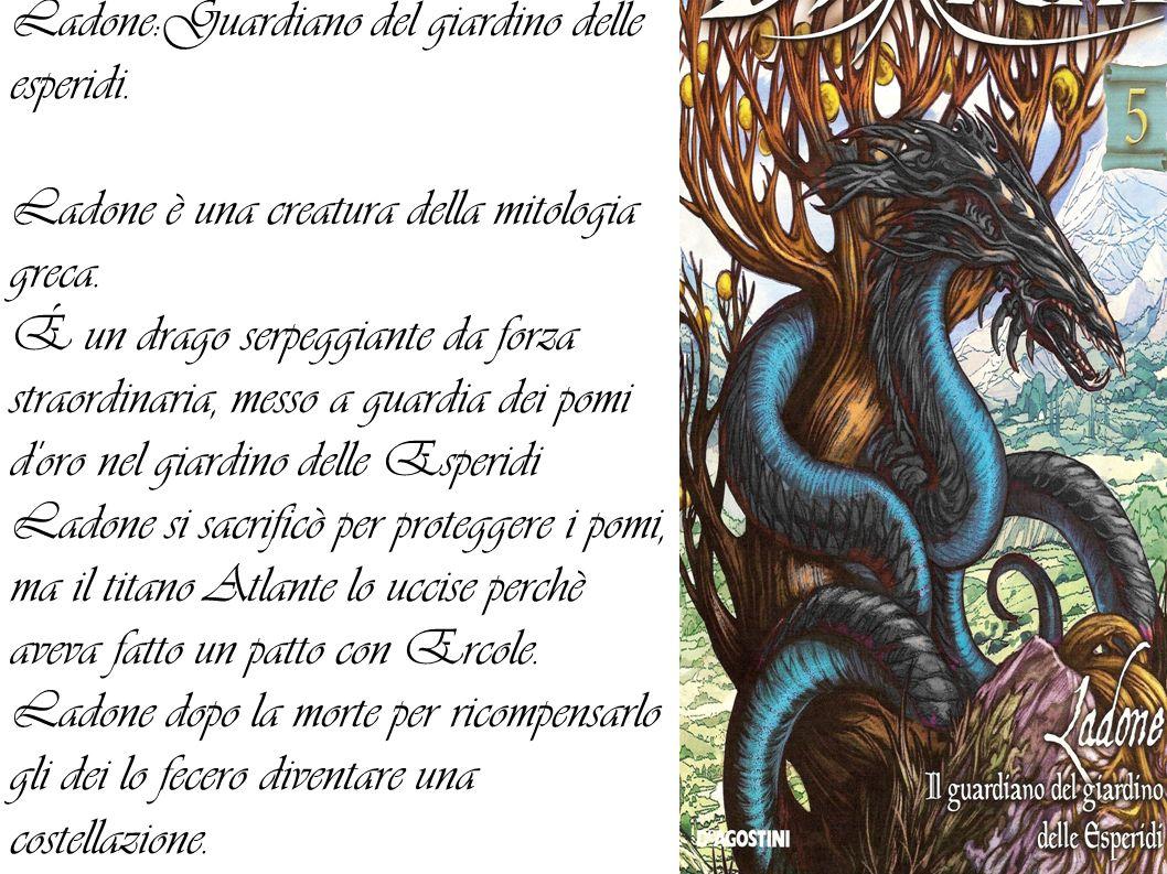 Ladone:Guardiano del giardino delle esperidi.