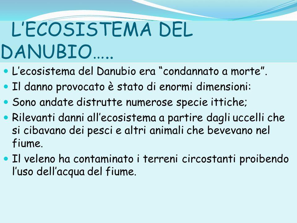 L'ECOSISTEMA DEL DANUBIO…..