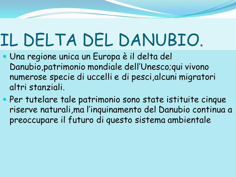 IL DELTA DEL DANUBIO.