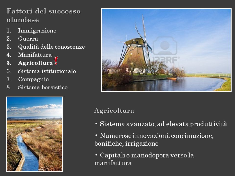 Fattori del successo olandese