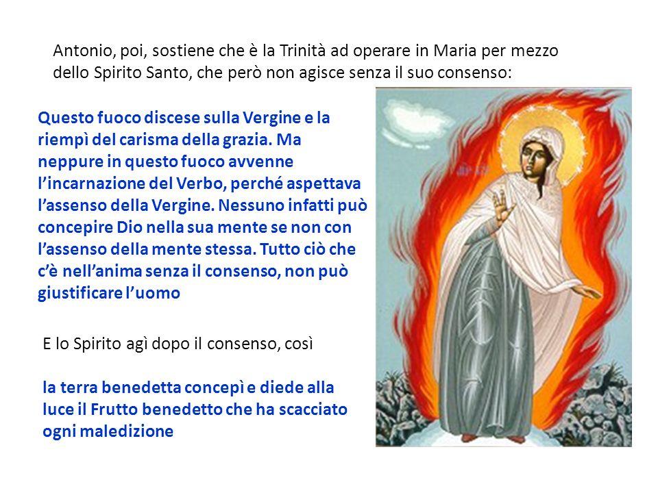 Antonio, poi, sostiene che è la Trinità ad operare in Maria per mezzo dello Spirito Santo, che però non agisce senza il suo consenso: